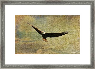 Eagle Medicine Framed Print by Deborah Benoit