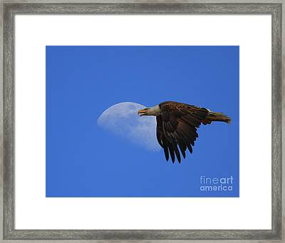 Eagle Moon Framed Print