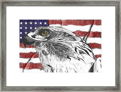 Eagle Framed Print by Nathaniel Hoffman