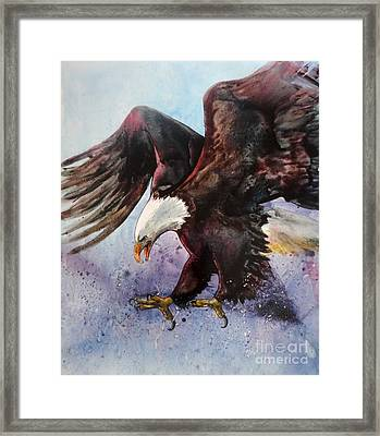 Eagle Of Light Framed Print