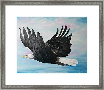 Eagle On A Mission      11 Framed Print