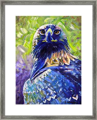 Eagle On Alert Framed Print