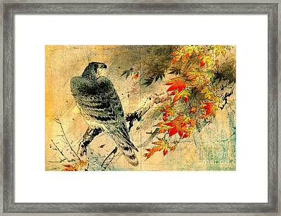 Eagle On Maple Branch 1884 Framed Print by Padre Art