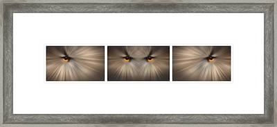 Eagle Owl Eye Triptych Framed Print