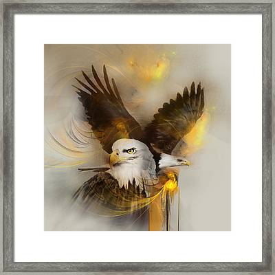Eagle Pair Framed Print