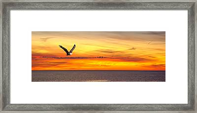 Eagle Panorama Sunset Framed Print by Randall Branham