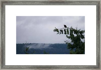 Eagle Powers Framed Print