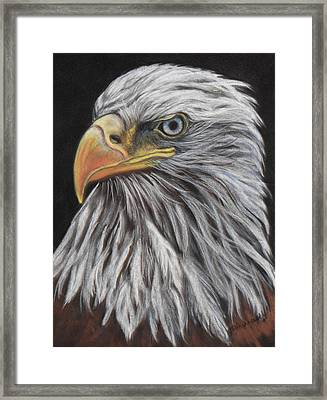 Eagle Profile Framed Print by Tracey Hunnewell