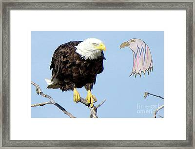 Eagle Reflection Framed Print