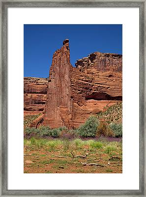 Eagle Rock - Standing Tall In The Canyon Framed Print by Lucinda Walter