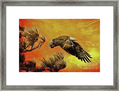 Framed Print featuring the painting Eagle Series Strength by Deborah Benoit