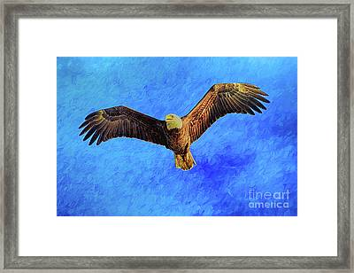 Eagle Strength And Spirit Framed Print by Deborah Benoit