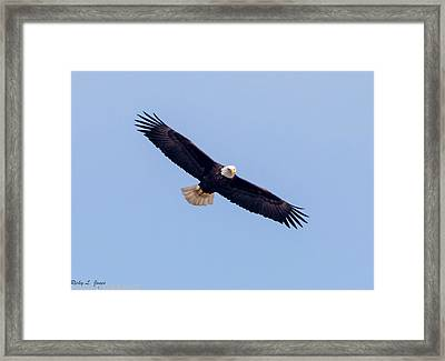 Framed Print featuring the photograph Eagle Watch 2018 by Ricky L Jones