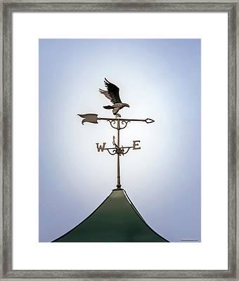 Eagle Weather Vane Framed Print