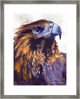 Eagle's Head Framed Print