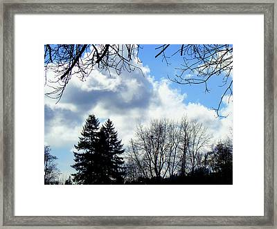 Eagles Nest In Faraway Tree Framed Print by Lisa Rose Musselwhite