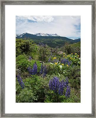 Eagle's Nest Peak Framed Print
