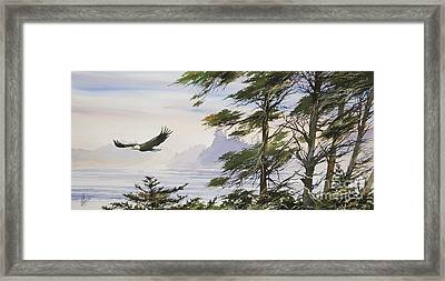Eagle's Shore Framed Print by James Williamson