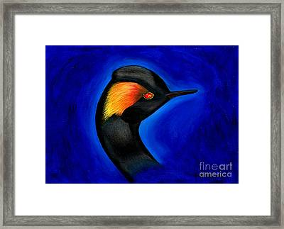 Framed Print featuring the painting Eared Grebe Duck by Fanny Diaz