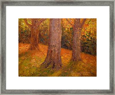 Early Autumn 2011 Framed Print