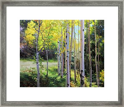 Early Autumn Aspen Framed Print