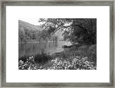 Early Autumn On Route 7 Framed Print by Karol Livote