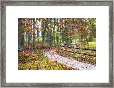 Early Autumn Stroll Framed Print