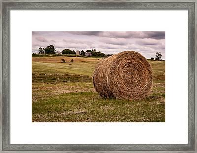 Early Autumn Framed Print