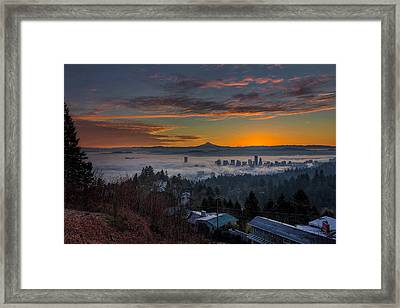 Early Bird Special Framed Print by David Gn