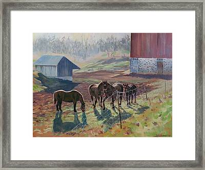 Early December At The Farm Framed Print