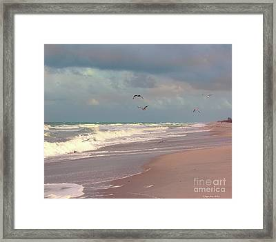 Early Evening Framed Print