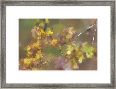Early Fall Leaves Framed Print