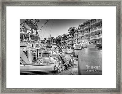 Early Fishing Trip Framed Print by David Zanzinger