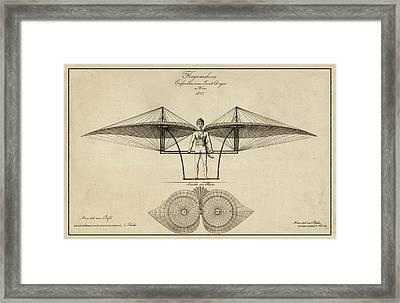 Early Flight Framed Print