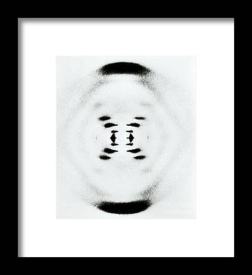 Molecular Biology Framed Prints