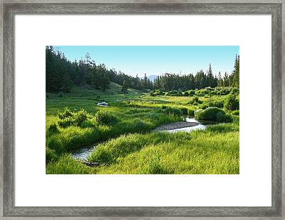 Framed Print featuring the photograph Early Morning Along The Stream by Marie Leslie