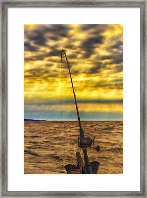 Early Morning Bite Framed Print by Bill Tiepelman