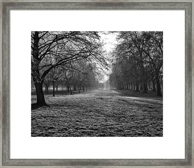 Early Morning In Hyde Park 16x20 Framed Print