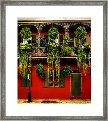 Early Morning In New Orleans Framed Print