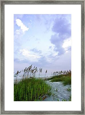 Early Morning In The Dunes Framed Print by Alan Hausenflock