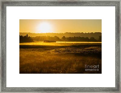 Early Morning In The Valley Framed Print by MaryJane Armstrong