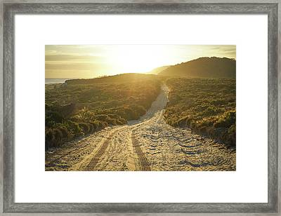 Early Morning Light On 4wd Sand Track Framed Print