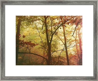 Early Morning Mist Framed Print by Bellesouth Studio