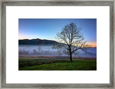Early Morning Mist In Cades Cove Framed Print