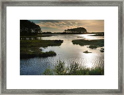 Early Morning On Beach Drive IIi Framed Print by Steven Ainsworth