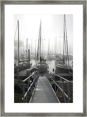 Early Morning On The Docks Framed Print by Laurie With