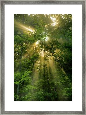 Early Morning Peace Framed Print by Christina Rollo