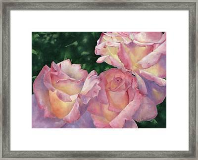 Early Morning Roses Framed Print by Sheryl Heatherly Hawkins