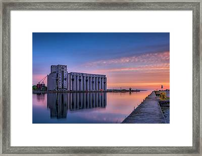 Early Morning Sentinels II Framed Print