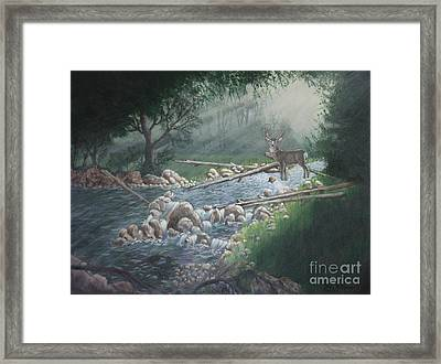 Early Morning Spectacle Framed Print
